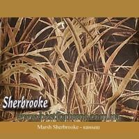 Master Sportsman® Marsh Sherbrooke