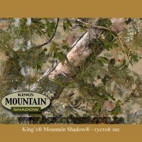 King's® Mountain Shadow®