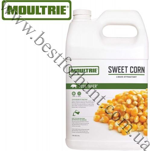 Moultrie® Tusk Taker® Sweet Corn Liquid Wild Hog Attractant