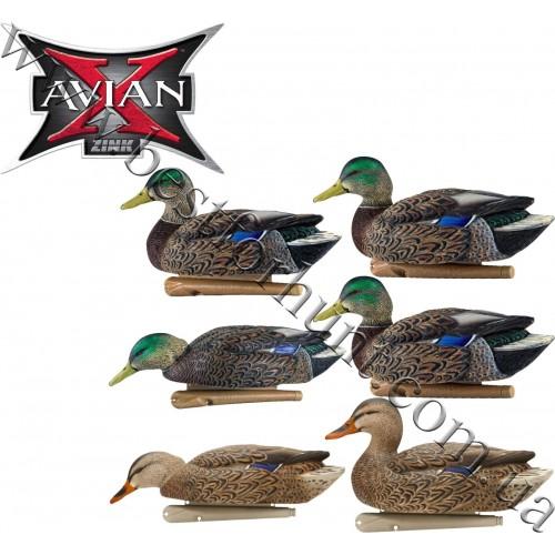 Avian-X® Topflight™ Early Season Floating Mallards Duck Decoys 6 Pack 8062