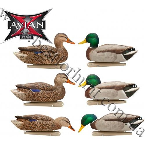 Avian-X® Topflight™ Fusion Floating Mallards Duck Decoys 6 Pack 8076
