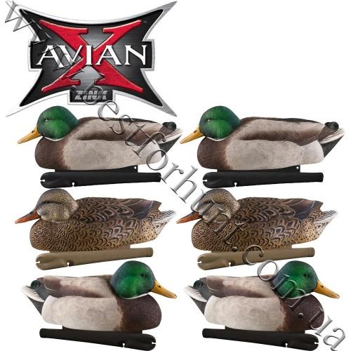 Avian-X® Topflight™ Late Season Floating Mallards Duck Decoys 6 Pack 8059