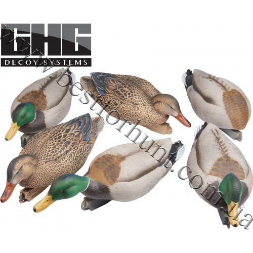 Greenhead Gear® Pro-Grade™ Mallard Feeder Duck Decoys 6 Pack 73109