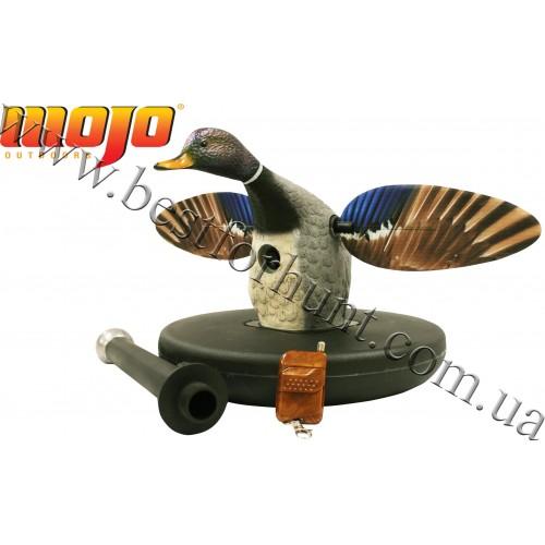 MOJO Outdoors® Elite Series™ Mallard® Drake Floater Motion Decoys