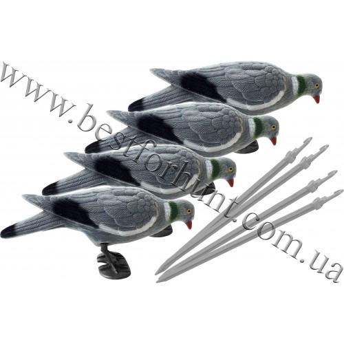 Pigeon Full Body Decoy Set 4 pcs
