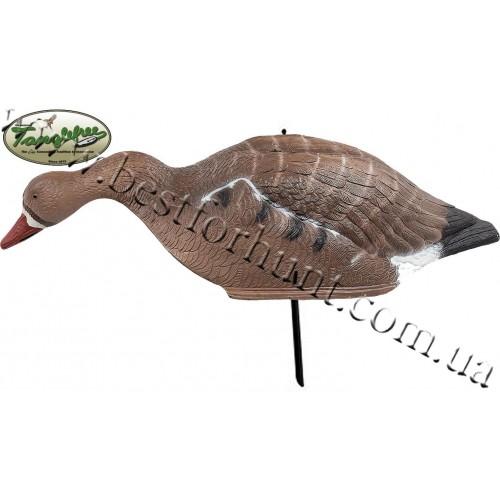 Tanglefree® Feeding Specklebelly Goose Shell Decoys