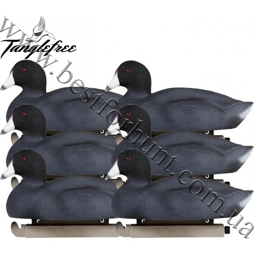 Tanglefree® Pro Series™ Coot Duck Decoys 6-Pack