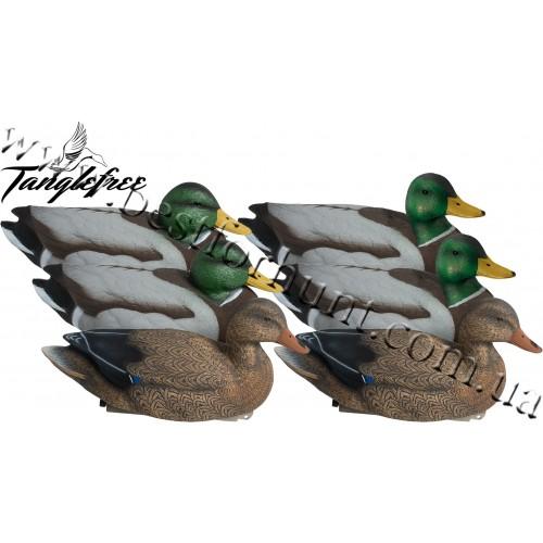 Tanglefree® Pro Series™ Super Magnum™ Mallard Decoys 6-Pack