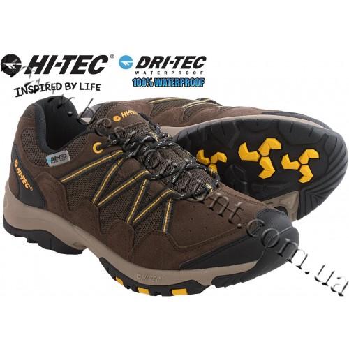Hi-Tec® Dexter Low Waterproof Hiking Shoes Chocolate-Core Gold